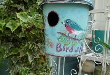 BirdHouse2016